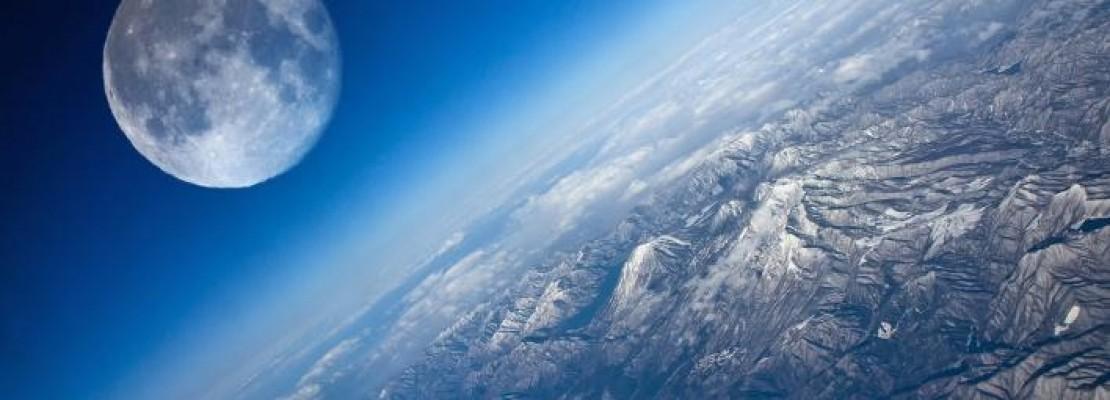 Η ιστορία της ζωής -Ολα όσα ξέρουμε για την εξέλιξή της στη Γη, σε ένα γράφημα