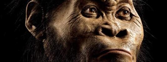 Συγκλονίζει τους επιστήμονες νέα ανακάλυψη -Βρήκαν νέο συγγενικό είδος του ανθρώπου (PHOTOS)