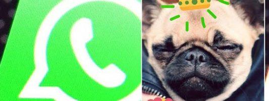 Η νέα ρύθμιση τύπου Snapchat στο WhatsApp
