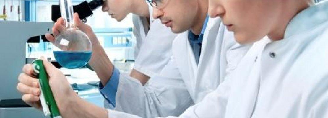 Επιστήμονες δημιούργησαν την πρώτη χίμαιρα ανθρώπου-χοίρου (Βίντεο)
