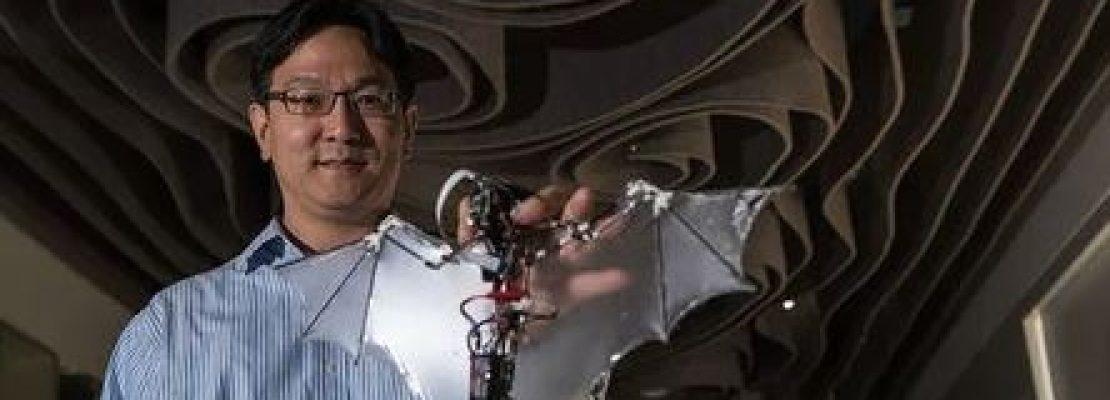 Ερευνητές δημιούργησαν το πρώτο ρομπότ-νυχτερίδα! (Βίντεο)