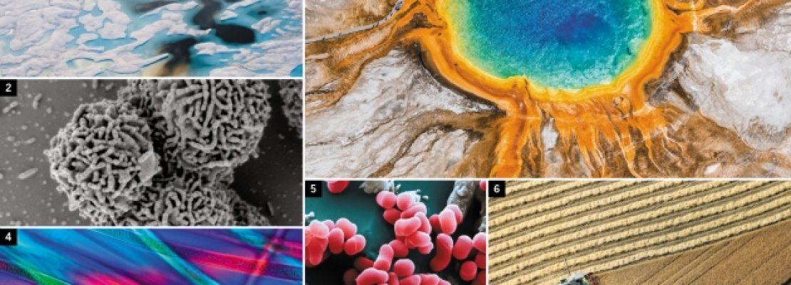 Βιολόγοι θέλουν να «διαβάσουν» το DNA όλης της ζωής πάνω στη Γη