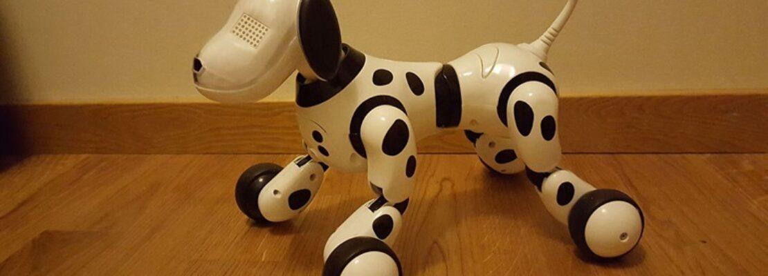 Οι καλύτεροι τρόποι για την αντιμετώπιση της μοναξιάς στο lockdown: Ρομποτικοί σκύλοι, διαλογισμός και… γέλιο