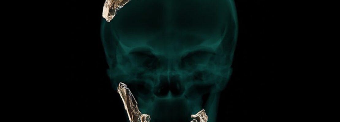 Nesher Ramla: Ένας άγνωστος έως τώρα Homo ανακαλύφθηκε στο Ισραήλ
